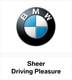 bmw_ds2_module_box.png.asset.1481563906324.png
